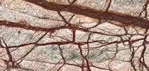Rainforest Brown Fliesen Preise