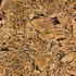 Granit Preise - 8620 Graphic Feldspar
