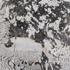 Granit Preise - Alpine White
