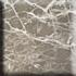 Granit Preise - Ambrato