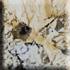 Granit Preise - Mascarello