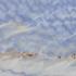 Granit Fensterbänke Preise - Azul Macaubas