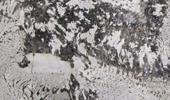 Alpine White Treppen Preise