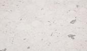 Bianco River Tischplatten Preise