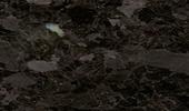 Granit Arbeitsplatten Preise - Brown Antique  Preise
