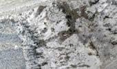 Mont Bleu Treppen Preise