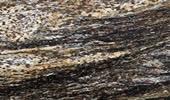 Granit Arbeitsplatten Preise - Orion Gold  Preise