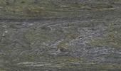 Velvet Green Treppen Preise