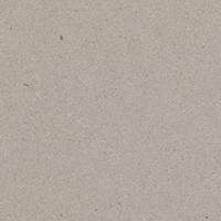 Caesarstone Classico - 4004 Raw Concrete