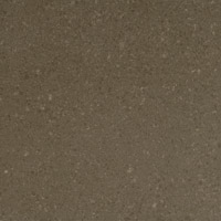 Caesarstone Classico - 4360 Wild Rice