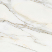 Apavisa - Borghini White