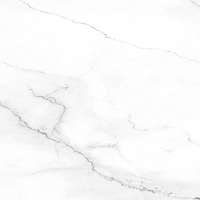 Apavisa - Calacata White Apavisa