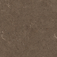 Silestone - Ironbark