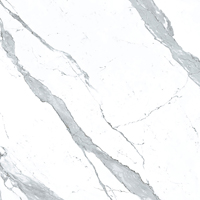 Apavisa - Statuario Extra White