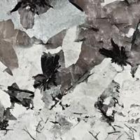 Granit - Turmalin