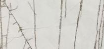 Marmor Treppen Preise - Golden Radix Treppen Preise