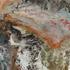 Apavisa  Preise - Fluid Multicolor A3  Preise