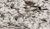Granit Preise - Bianco Antico Fensterbänke Preise