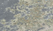 Schiefer Worktops prices - Multicolor Schiefer  Prices