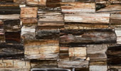 8331 Petrified Wood Classic - Treppenanlagen