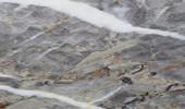 Versailles - Natursteinplatten - Marmor